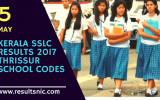 Kerala SSLC Results 2017 School Wise results Thrissur District
