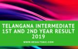 Telangana Board TS inter results 2019